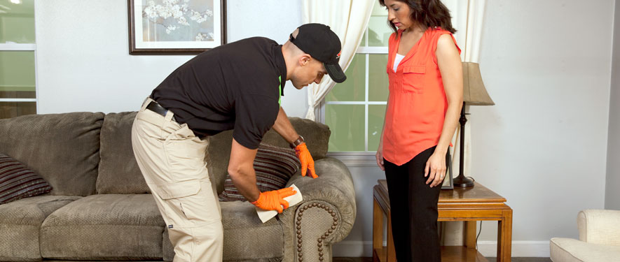 Santee, CA carpet upholstery cleaning